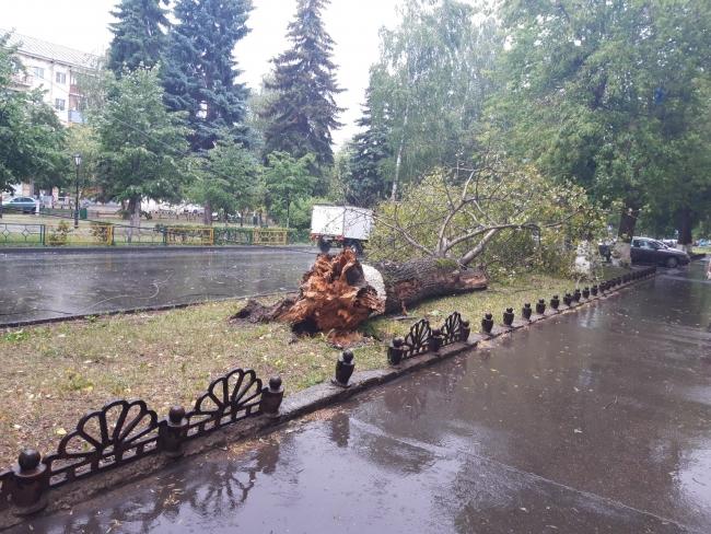 Ураган обрушил деревья в Нижнем Новгороде