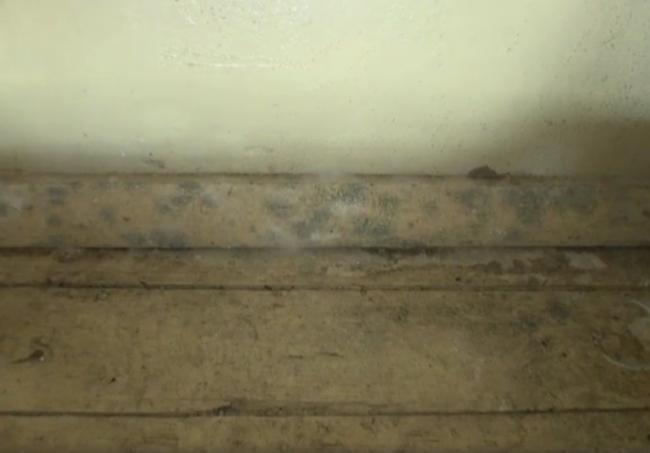 Image for Сообщение о некачественном ремонте школы в Городце проверяют следователи
