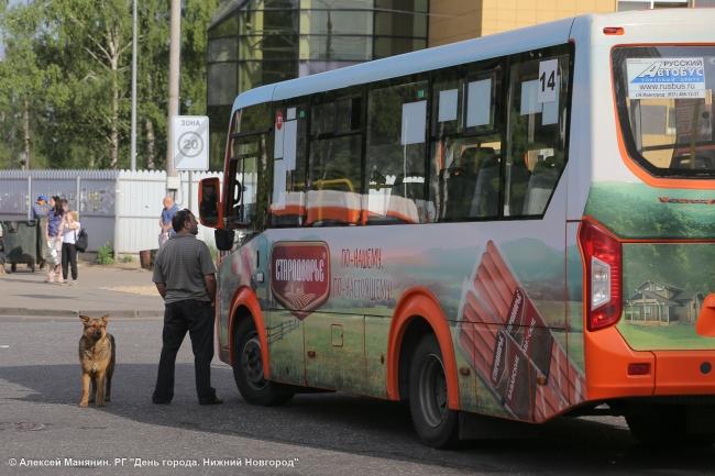 Image for План развития автостанции «Щербинки» представили жителям Нижнего Новгорода
