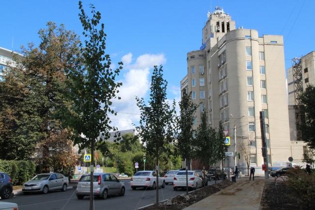 Image for Аллею из лип высадили в центре Нижнего Новгорода