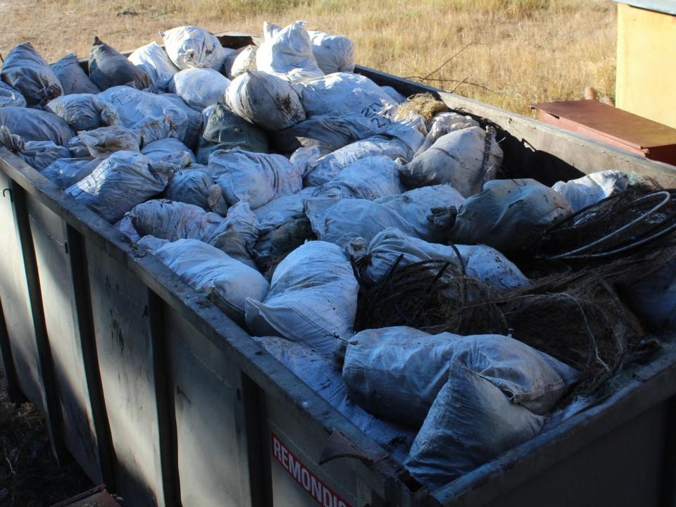 Image for Более 3,5 тысяч рыб спасли за месяц из браконьерских сетей в Нижегородской области