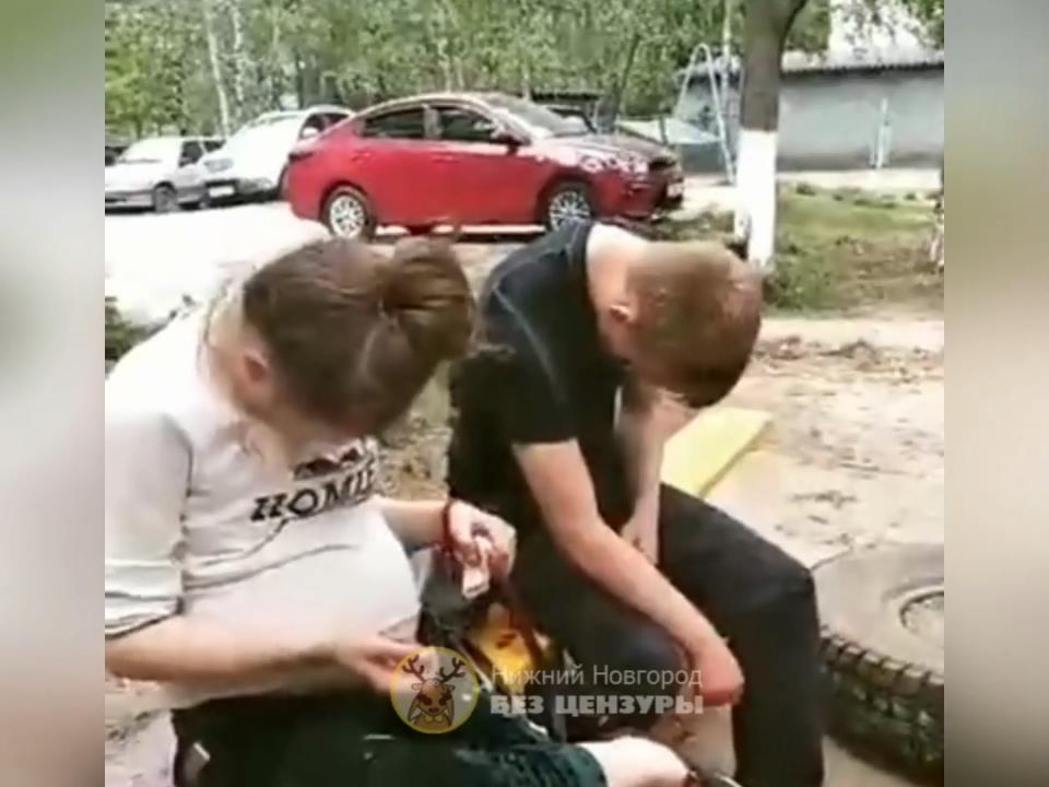 Пьяные подростки попали на видео: беременная девушка возмутила нижегородцев