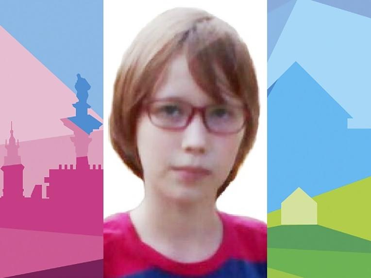 Image for К поискам 13-летней Марии Ложкарёвой присоединились более 400 человек