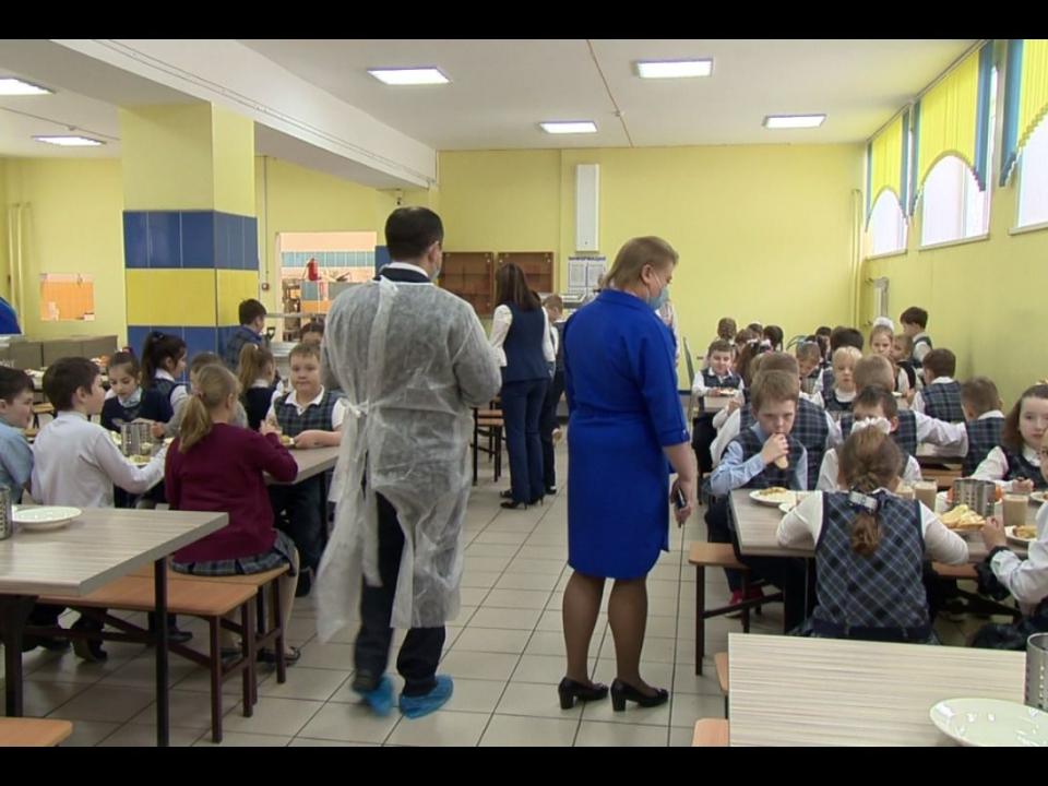 Нижегородских рестораторов хотят привлечь к проверкам питания в школах