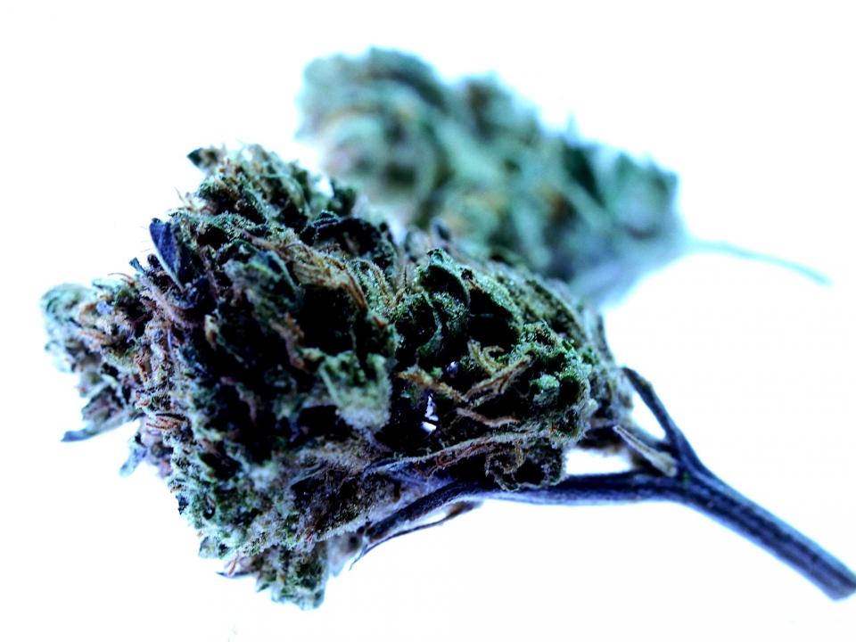 Image for На арзамасца завели уголовное дело за предложение своей девушке угоститься наркотиками