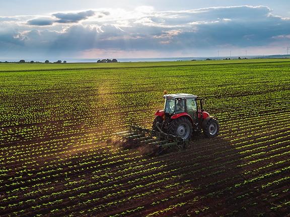 Image for Проект закона о мерах по развитию кадрового потенциала сельскохозяйственного производства региона принят в первом чтении