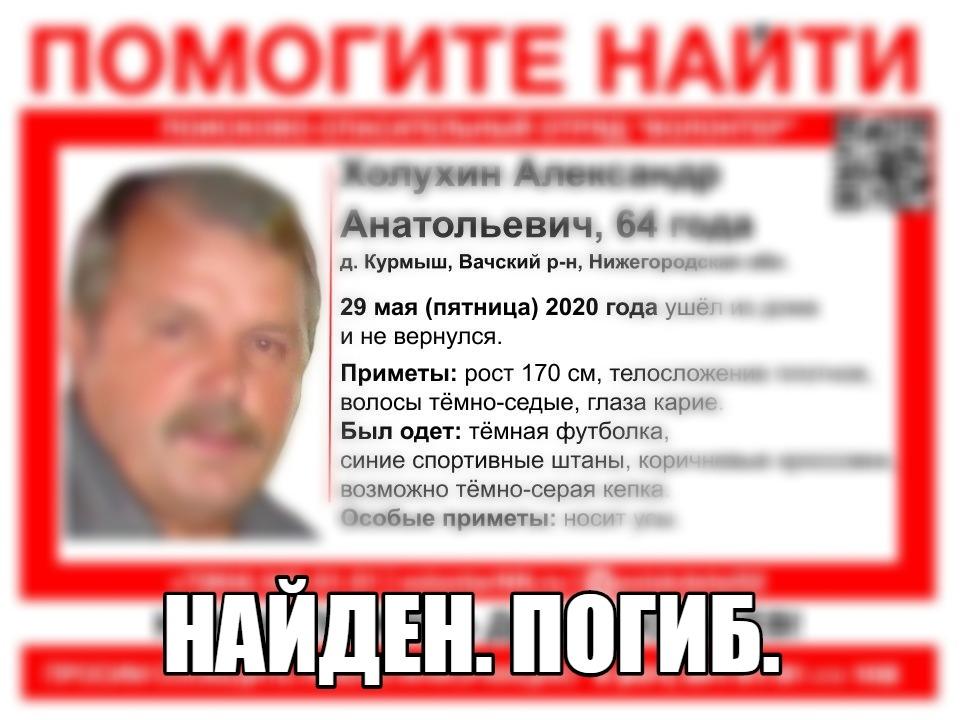 Image for Пропавший в Вачском районе пенсионер найден погибшим
