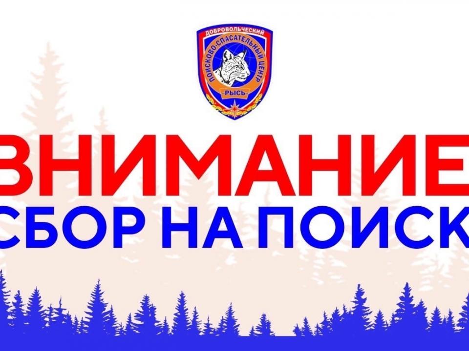 Image for Сбор на поиск 36-летней нижегородки объявили волонтеры
